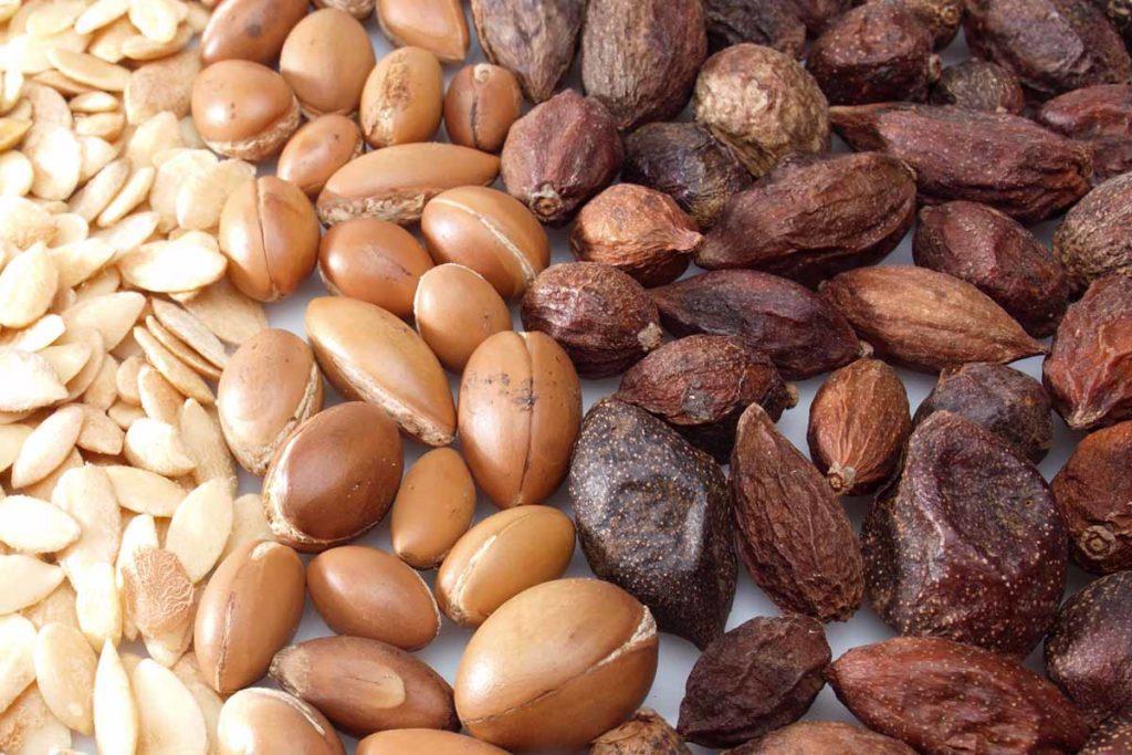Arganfrüchte und - nüsse, © Henry Lamotte GmbH