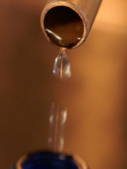 Hydrolate destillieren: Aus der Destille tropfendes Hydrolat